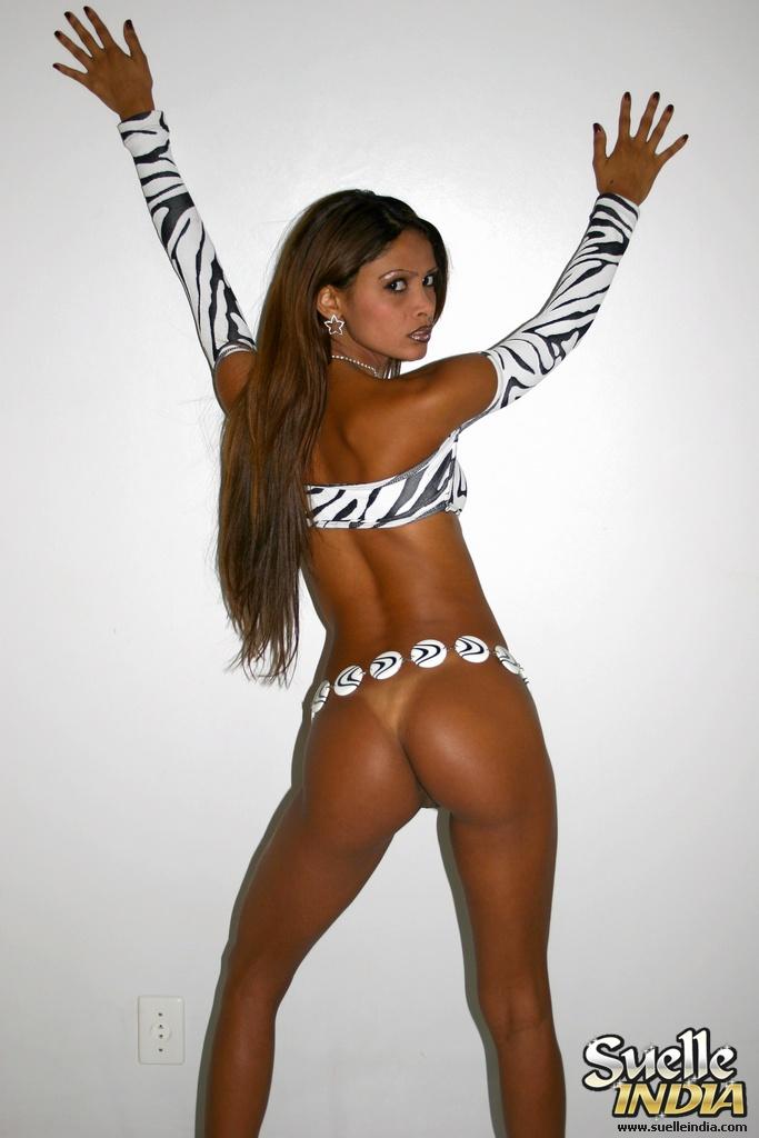 NN Latina .:. Suelle India .:. Zebra: www.nnlatina.com/suelleindia/zebra